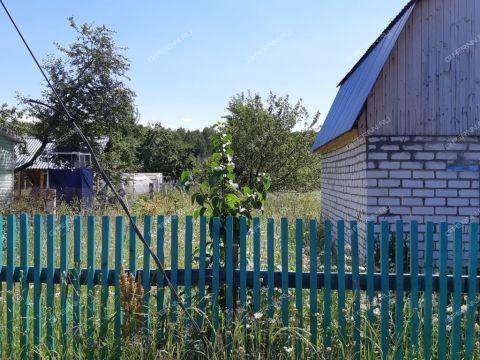 dacha-derevnya-novaya-puner-kstovskiy-rayon фото