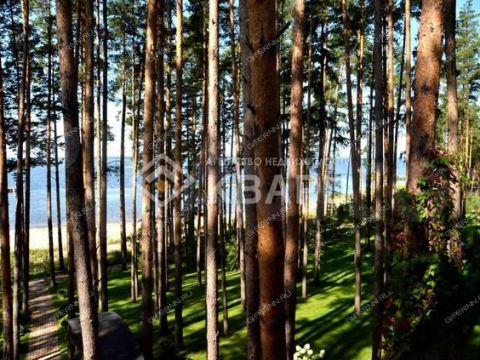 derevnya-bolshoy-suhodol-gorodeckiy-rayon фото