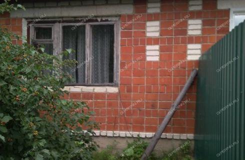 2-komnatnaya-derevnya-shhepachiha-pavlovskiy-rayon фото